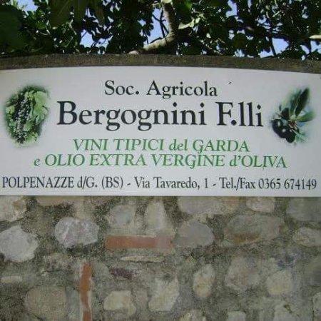 Polpenazze del Garda, Italie : Societa Agricola Bergognini Fratelli
