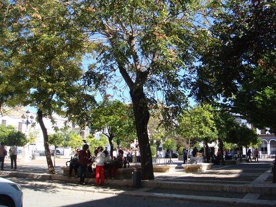 Osuna, สเปน: Views from El Molinillo on Plaza Mayor