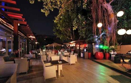 N Lounge Bar Terrasse Picture Of Novotel Dakar Tripadvisor