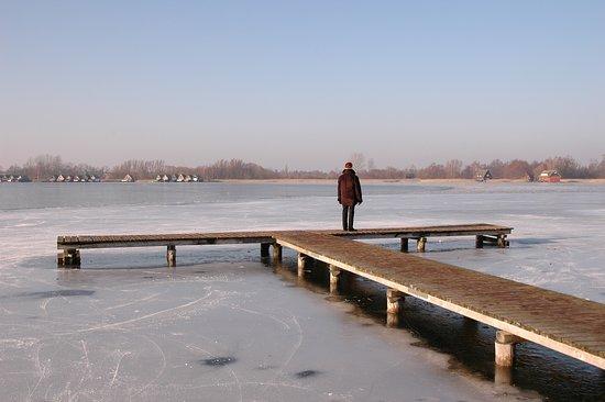 Güstrow, Germania: Winterstimmung am Inselsee