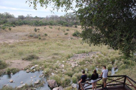 Фотография Lukimbi Safari Lodge
