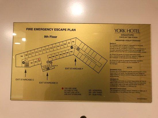 York Hotel: photo4.jpg