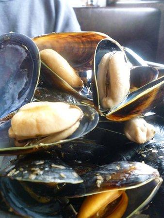 Coupeville, Etat de Washington : Mussels