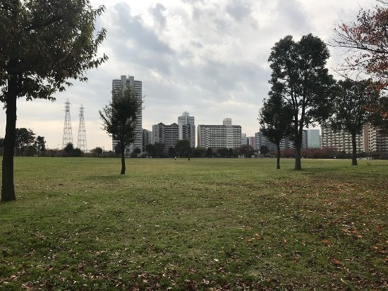 Ojima Komatsugawa Park : 江戸川区側が圧倒的に広い