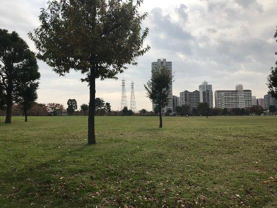 Ojima Komatsugawa Park : 江戸川区側が荒川の眺めも良い