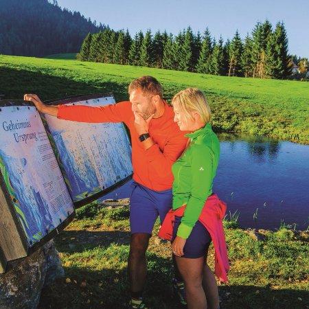Styria, Österrike: Naturlesen ist eines der Hauptthemen im Naturpark Zirbitzkogel-Grebenzen