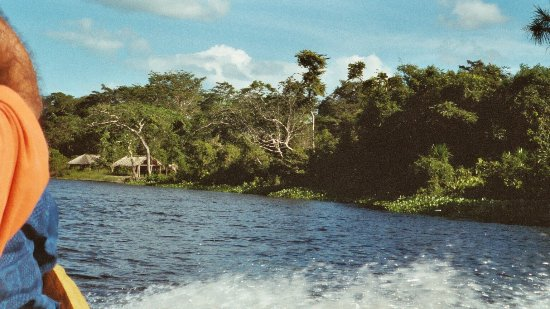 Orinoco Delta, Venezuela: canoe ride to camp