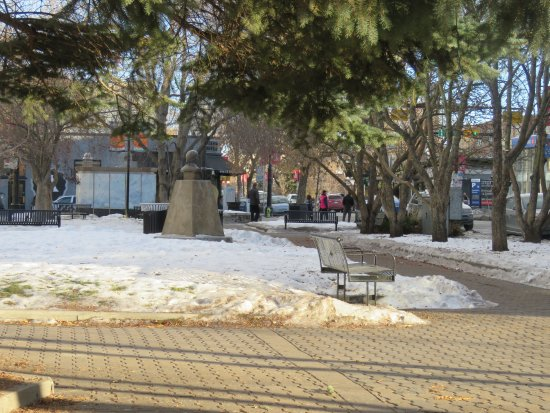 Tomkins Park: Clean paths and lots of benches