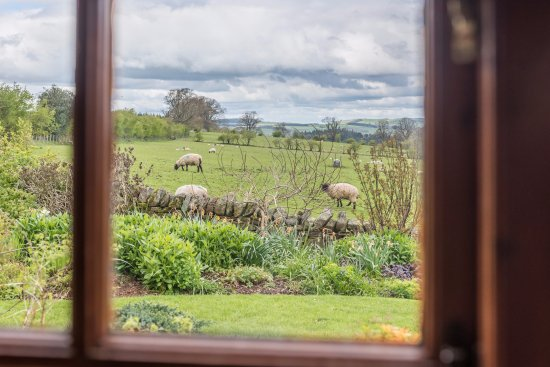Inglewood Cottage - Uninterrupted views towards the village of Kirkoswald.