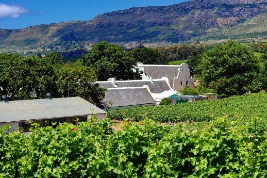 Constantia, Republika Południowej Afryki: Zeit nehmen und genießen