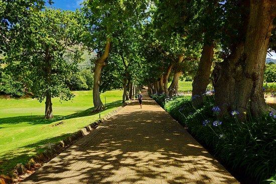 Constantia, Sudáfrica: Zeit nehmen und genießen