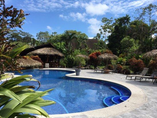 Suizo Loco Lodge Hotel & Resort: Pool and gardens