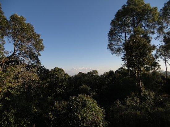 Chevron Rosemount, Ranikhet: View of mountains from the backside