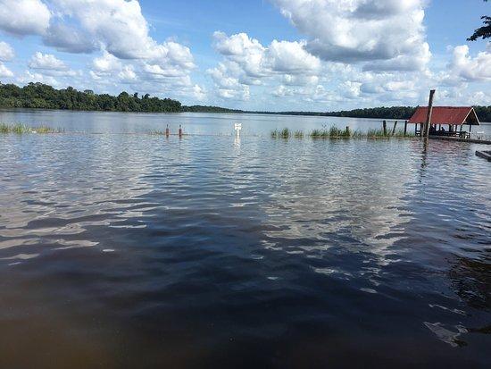 La Simplicite, Surinam: photo2.jpg