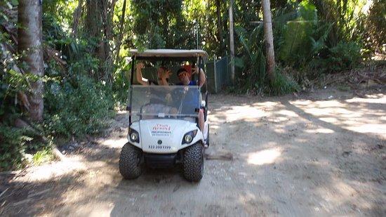 Town Around - Golf Carts Rentals: 4 wheeling
