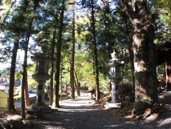 Shimosuwa-machi, Japan: photo9.jpg