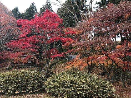 Otawara, Jepang: photo1.jpg