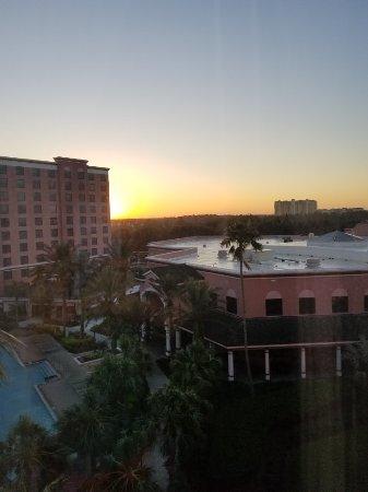 Caribe Royale Orlando: 20171104_074724_large.jpg