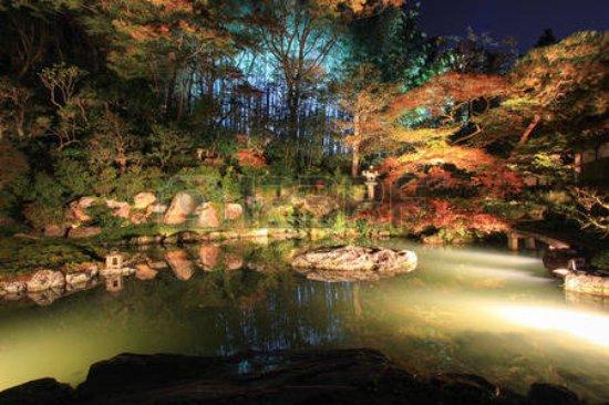 Shoren-in Temple (Shoren-in Monzeki): autumn night in shoren-in temple