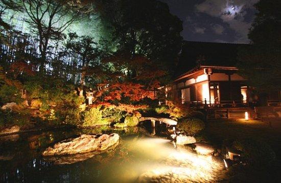 Shoren-in Temple (Shoren-in Monzeki): Autumn night in Shoren-in Temple 2