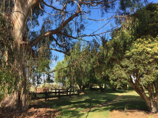 Sagasser Park