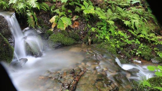 Hino Falls