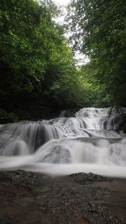 Naganohara-machi, Japón: 魚止めの滝:全景