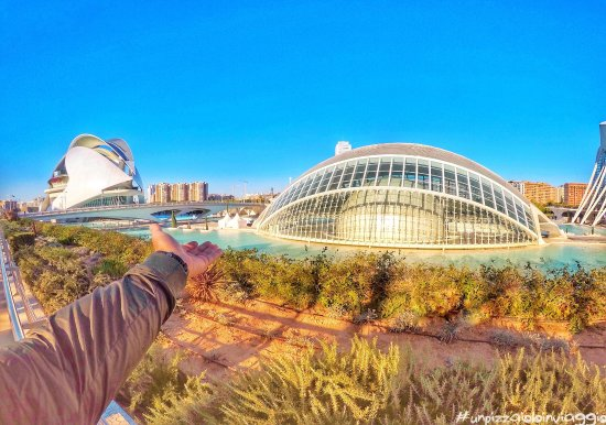 City of the Arts and Sciences: photo0.jpg