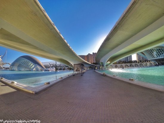 City of the Arts and Sciences: photo2.jpg