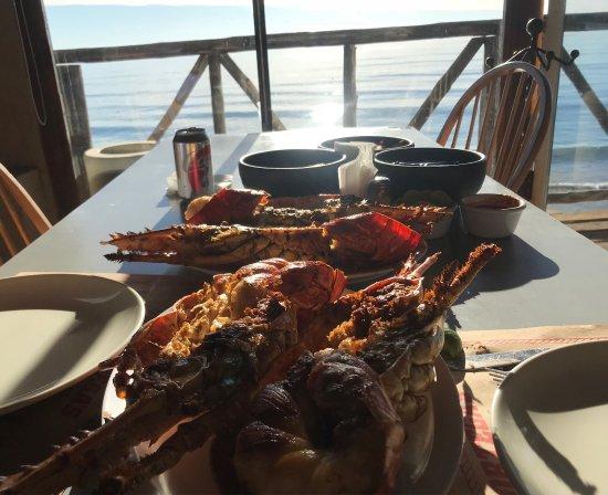 Puerto Nuevo, เม็กซิโก: 70 usd p/lobster
