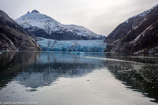 Petersburg, AK: Magnificent Dawes Glacier in Endicott Arm. An Alaska Sea Adventures favorite visit location.