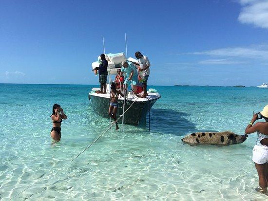 Hidden Beaches (Nassau) - Book in Destination 2019 - All You Need to