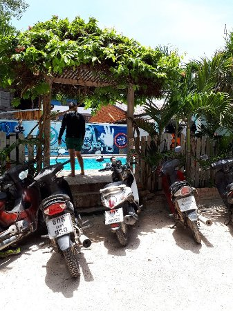 Buddha View Dive Resort : 20170417_115641_large.jpg