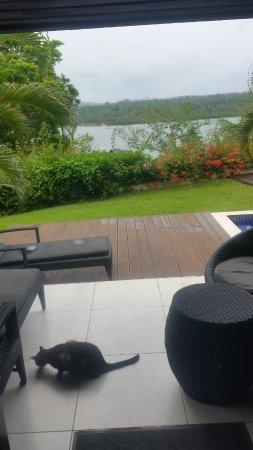 Mangoes Resort : Spike