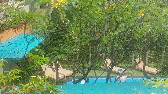 Febri's Hotel & Spa: 20171120_161023_large.jpg