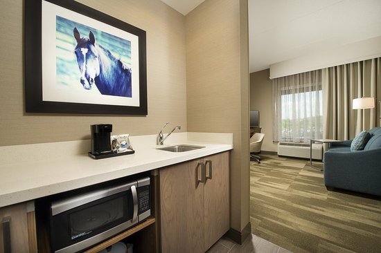 Timonium, MD: King Bed Suite Room