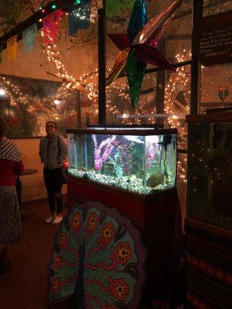 Mesilla, Nuevo Mexico: A very festive atmosphere...