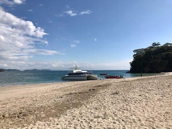 Herradura, Costa Rica : Super trip to Tortuga Island