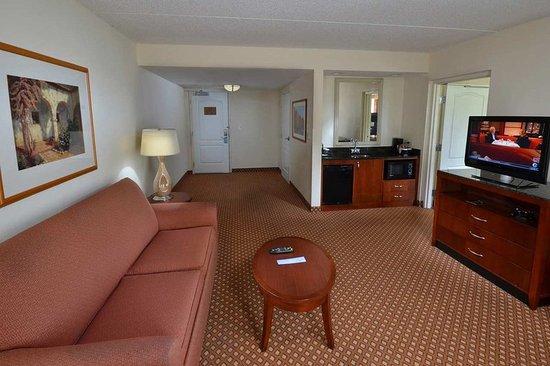 Hilton Garden Inn Greensboro: Executive Living Room