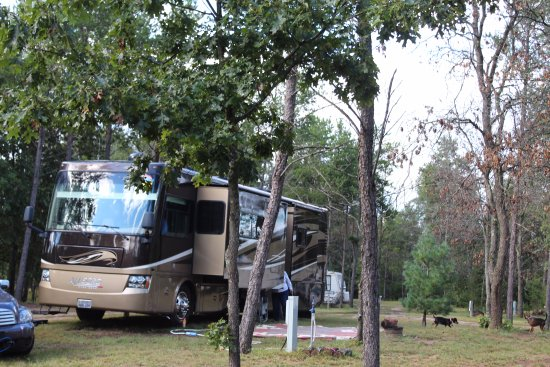 Necedah, WI: Our Campground