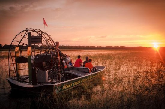 Florida Airboat Adventure at Night