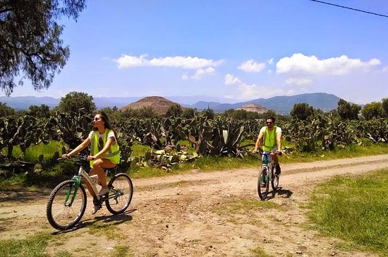 Teotihuacan 4-Hour Guided Bike Tour with Atetelco and Lunch