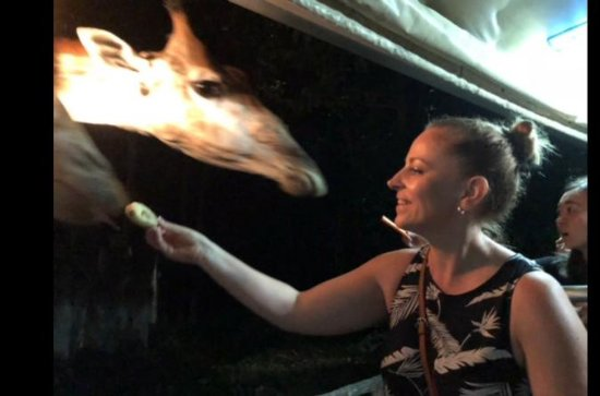 Chiang Mai Night Safari