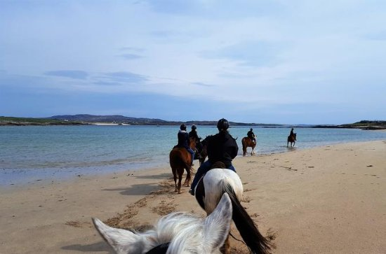 Full-day Wild Atlantic Way Horseback...