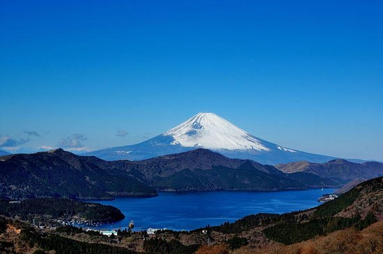 Private Custom Hakone from Tokyo with...
