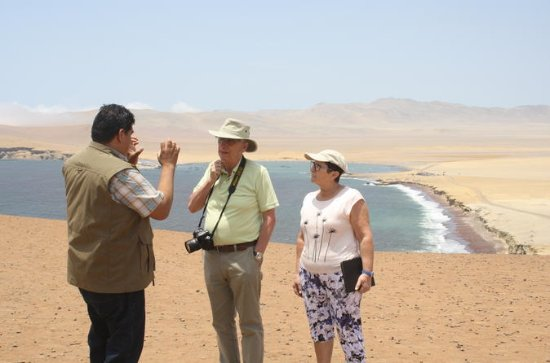 Private Tour: Ganztägige Paracas-Tour ...