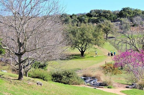 Marble Falls Wine Tasting and Disc Golf Package
