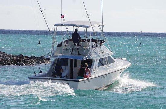 Pêche en haute mer au départ de Punta...
