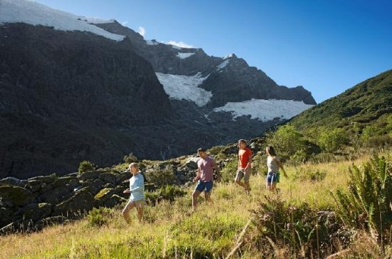 Wanaka Rob Roy Glacier Hike from...