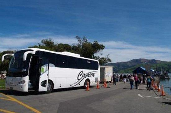 Full-Day Round-Trip Tour fra Akaroa...